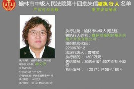 榆林发布失信被执行人黑名单 第一期216人成老赖(附名单)