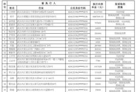 武汉发布2017年第6批失信黑名单