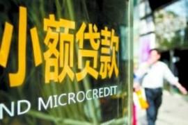 嵇少峰:中国小额贷款公司的监管逻辑与未来
