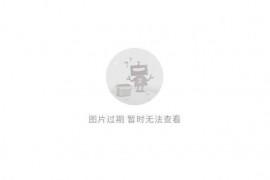 哈罗单车控诉ofo 故意破坏友商共享单车