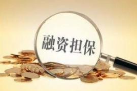 江西投放政府性融资担保贷款超25亿元 支持企业复工复产