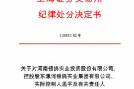 上海证券交易所对河南银鸽实业投资股份有限公司、 控股股东漯河银鸽实业集团有限公司、 实际控制人孟平及有关责任人予以纪律处分的决定