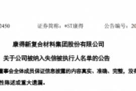 康得新复合材料集团股份有限公司 关于公司被纳入失信被执行人名单的公告
