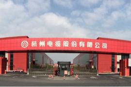 杭电股份:为合营公司提供担保暨关联交易