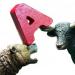 买入点:MACD柱线和股价底背离