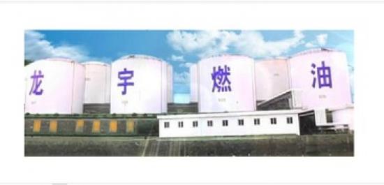 龙宇燃油股东被上交所予以通报批评处分